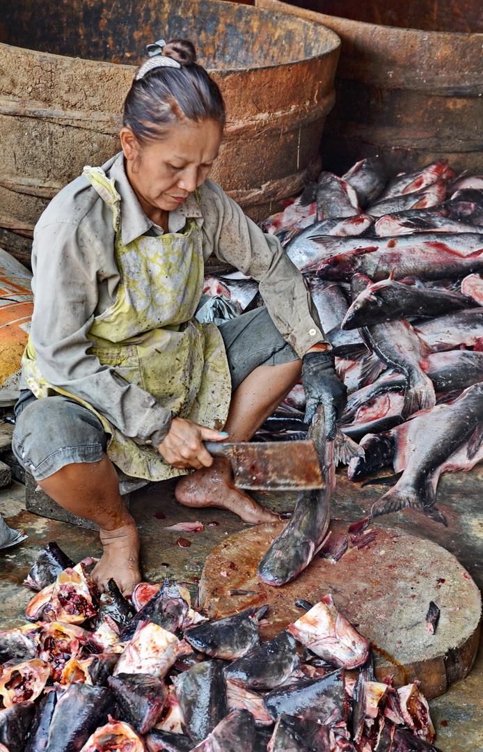 Cambodia, Phsa Prahok 7