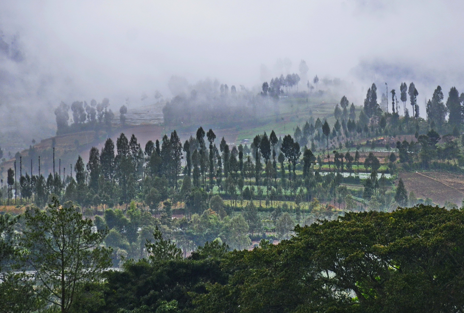 Indonesia, Dieng Plateau