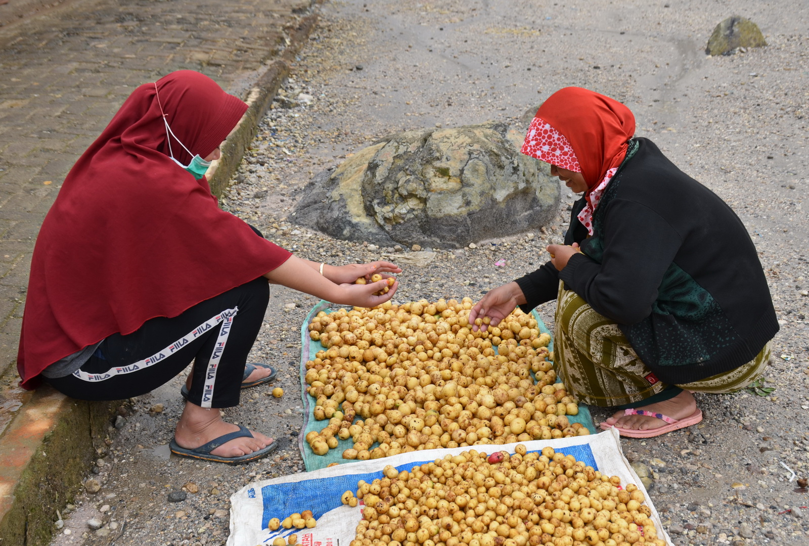 Indonesia, sorting spuds in a caldera - as you do...