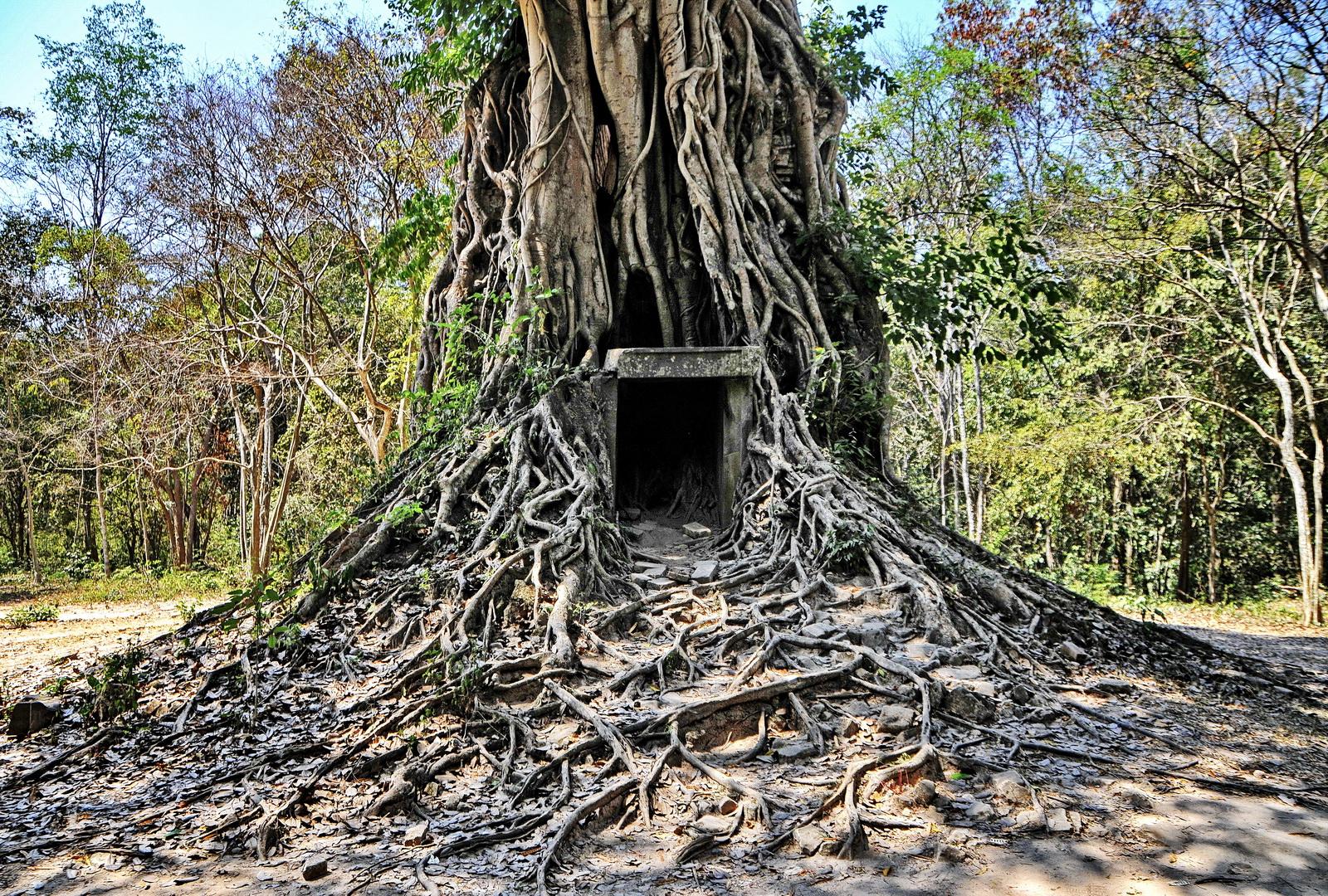 Lesser-known Angkor temples: Sambor Prei Kuk