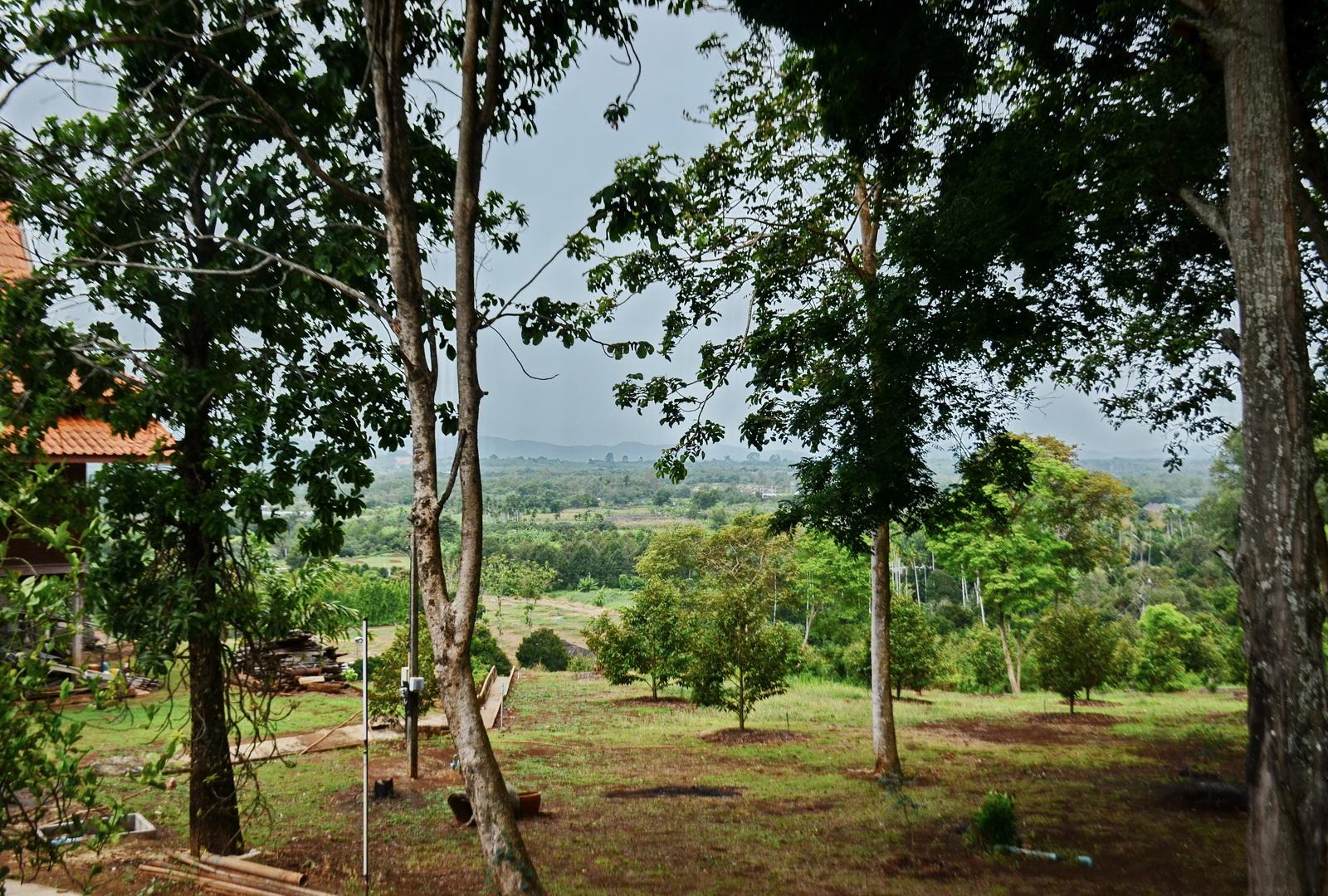 Wat Bon sits atop a low hill
