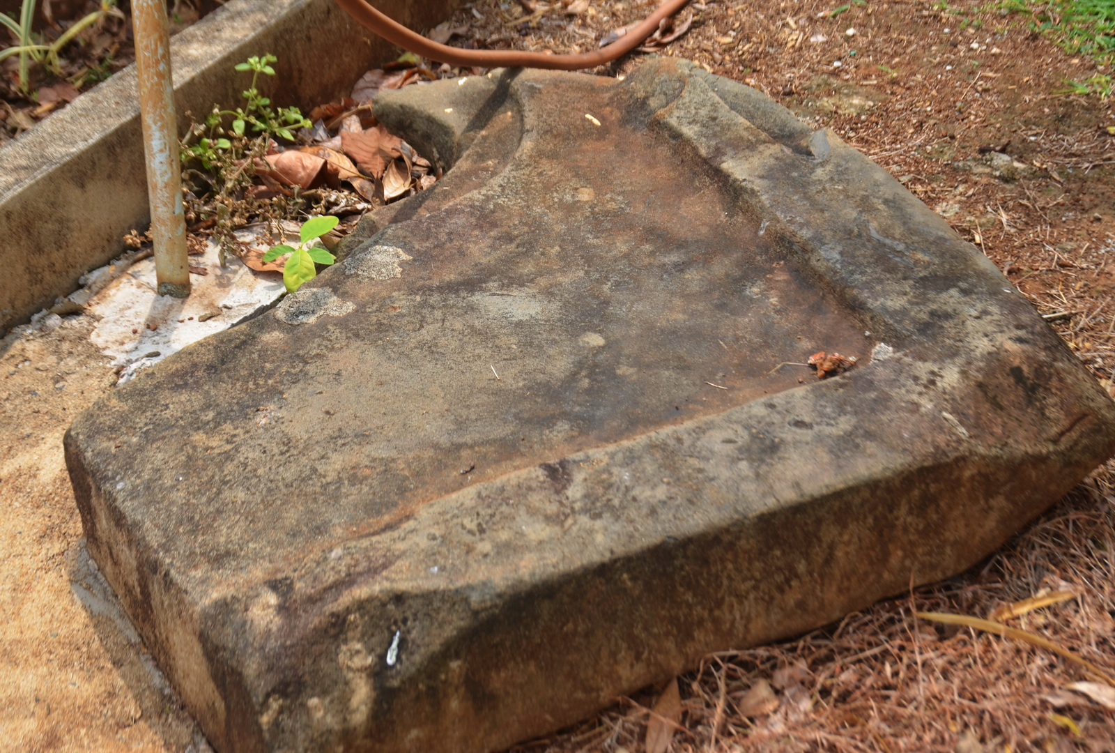 A damaged sandstone plinth or perhaps linga base was also discovered at the site